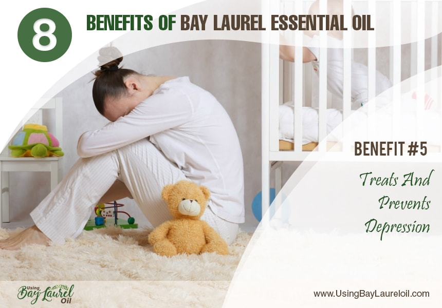 laurel oil for hair
