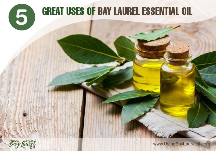laurel oil for hair