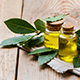 5 Great Uses Of Bay Laurel Essential Oil