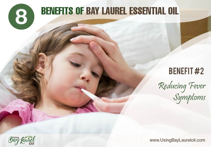 how to use bay leaf essential oil